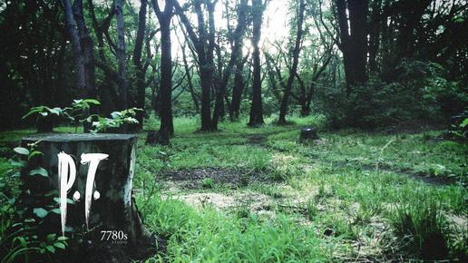 Capa de P.T., o teaser jogável de Silent Hills