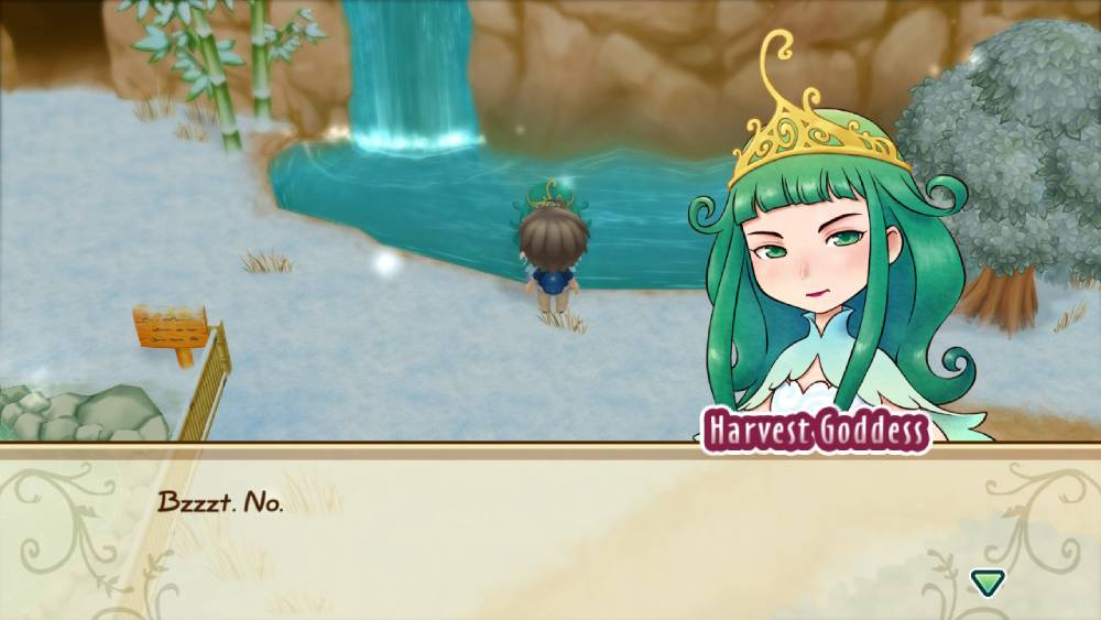 Screenshot de Story of Seasons: Friends of Mineral Town
