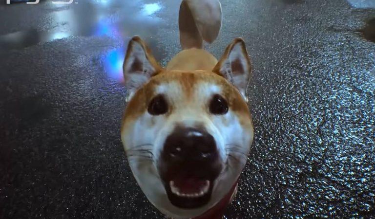 Sim, você poderá acariciar cachorrinhos em Ghostwire: Tokyo