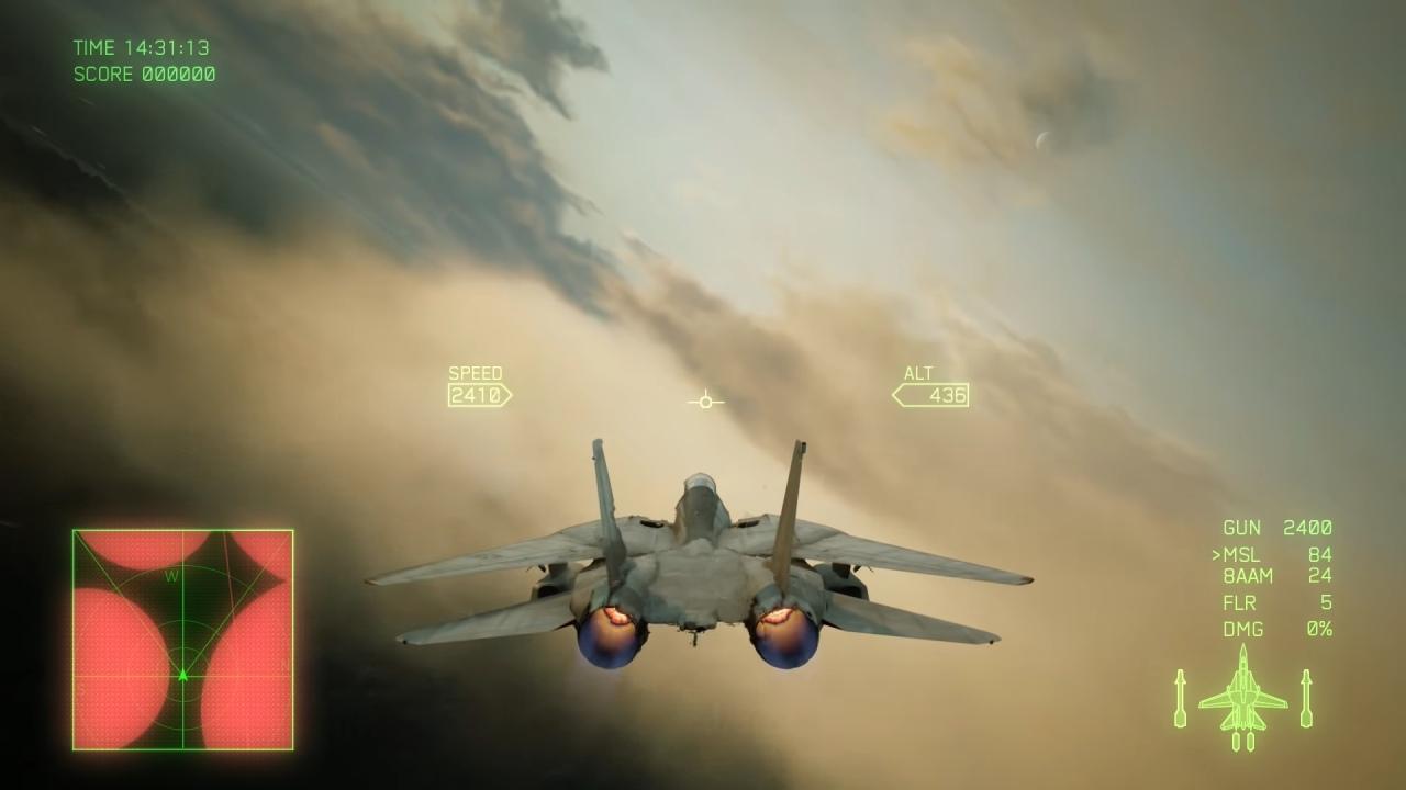 Ace Combat 7 F-14